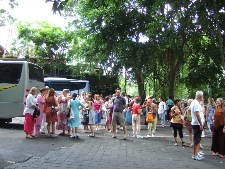 We arrived at the entrance to the famous Monkey Forest.