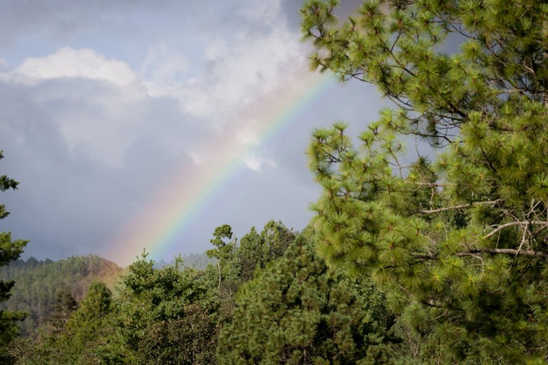 As soon as the Ceremony was finished, we were blessed with a light rain and a huge double rainbow!
